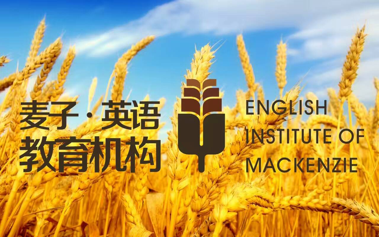 麦子英语_logo