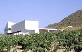 Bodega Sierra Salinas1