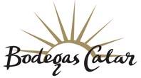 logo calar2013