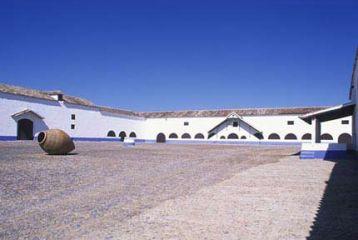 Bodegas Casa de la Viña1