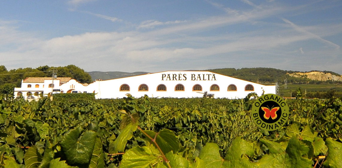 Bodegas Parés Baltà1
