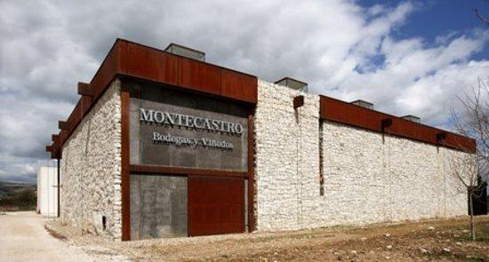 Bodegas y Viñedos Montecastro1
