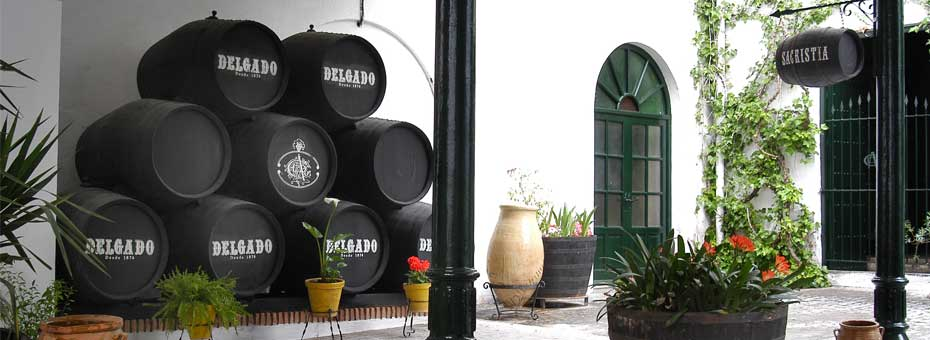 Delgado-Patio bodegas