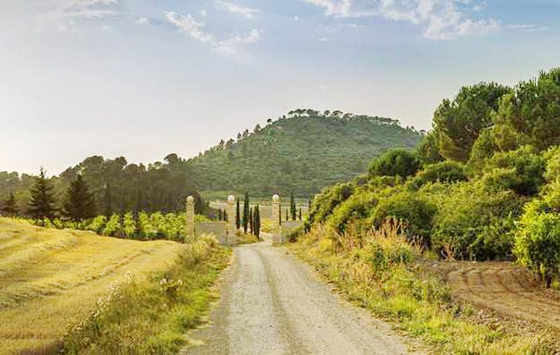Hacienda-El-Ternero