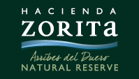 Hacienda Zorita Natural Reserve1