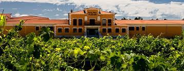Myvino Extremadura.酒庄