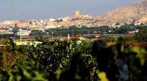 Ruta del Vino de Alicante1