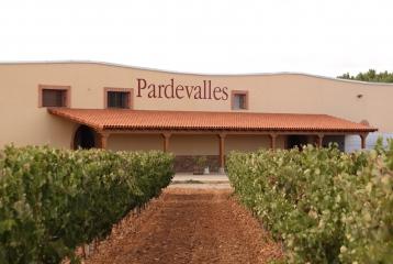 Viñedos y Bodega Pardevalles1
