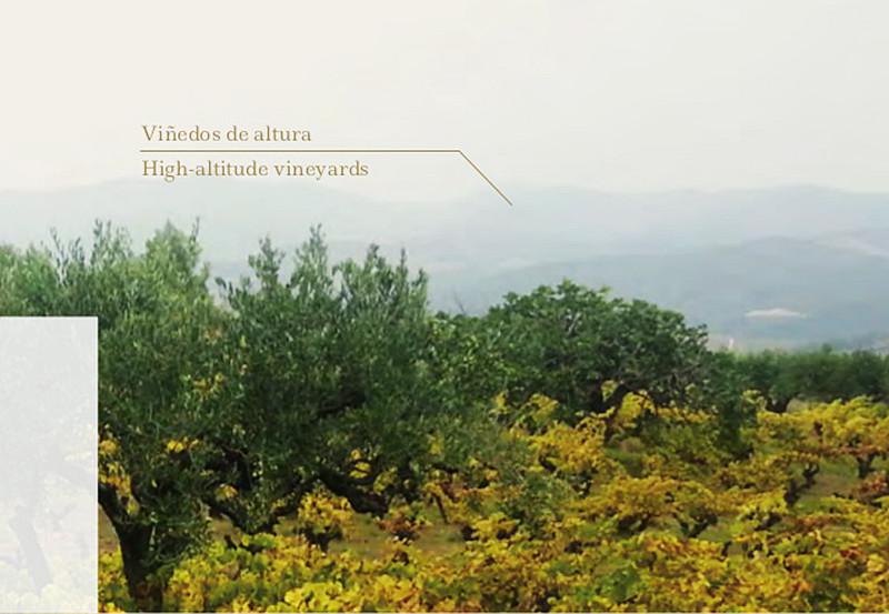 bodegas-la-casa-de-lculo-brochure-9-638