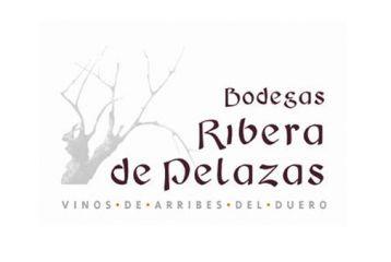 bodegas ribera_pelazas