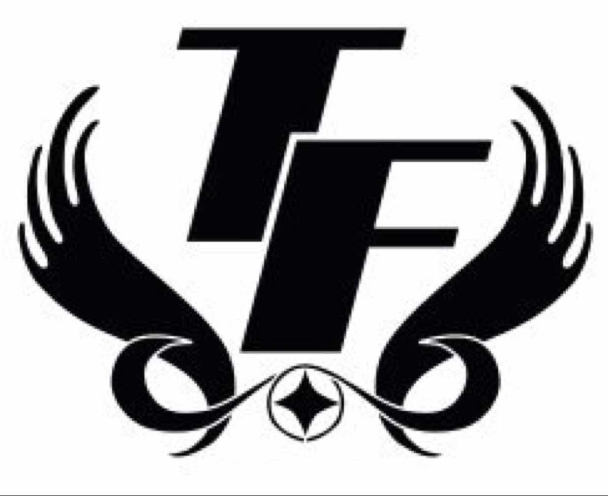 tengfei_logo