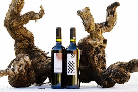 Bodega Balcona-Partal 酒庄